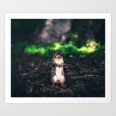 Squirrel Spirit #society6 #wildlife #decor Art Print