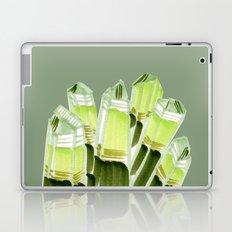 emerald city. Laptop & iPad Skin