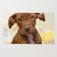 pit bull Area & Throw Rugs featuring Pit Bull  Mix Cutie Puppy for Adoption  by Peggy Volunteer Photographer  FOR RESCUE
