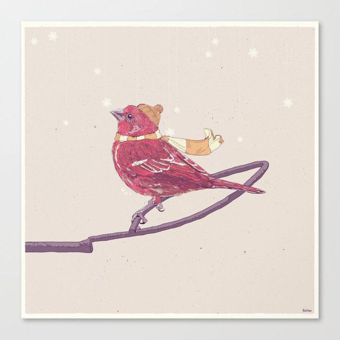 Winter Finch Canvas Print