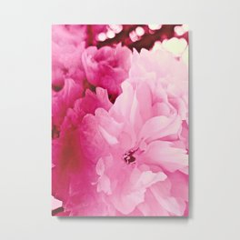 Plum Blossoms-Flowering For No One, No Reason Metal Print