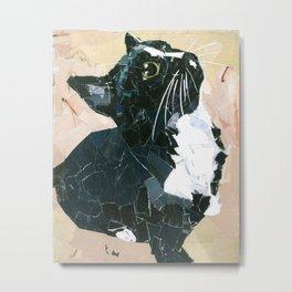 Lady Speedstick Kitty Metal Print