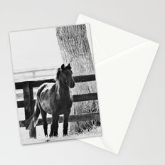 horse by the fence Stationery Cards