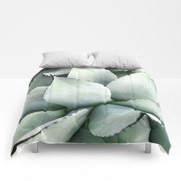 Agave deserti Comforters