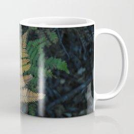 Moody Fern in Santa Cruz Forest Coffee Mug