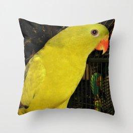 Rock Pebbler Throw Pillow