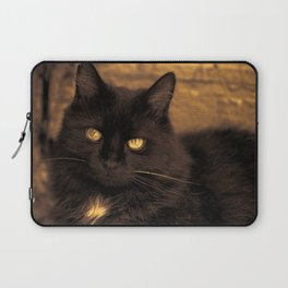Golden Eyed Kitty Laptop Sleeve