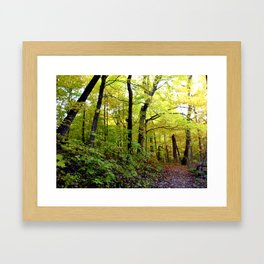 Kenosha, WI fall 2009 Framed Art Print
