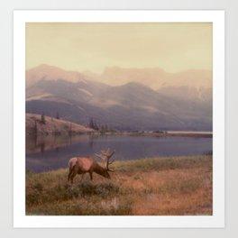 Bruce the Elk Art Print