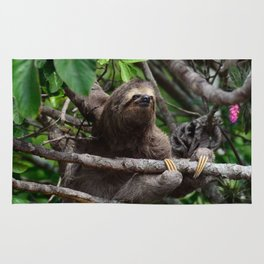 Sloth_20171106_by_JAMFoto Rug