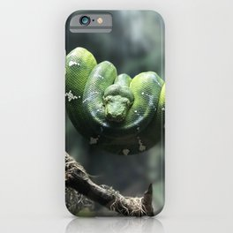 GREEN SNAKE ON GRAY TWIG IN SELECTIVE FOCUS PHOTOGRAPHY iPhone Case