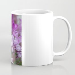 Cleome No. 27 Coffee Mug