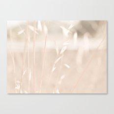 Plain Canvas Print