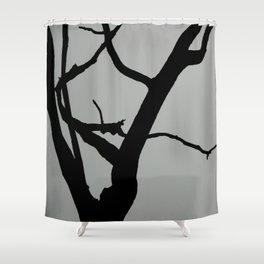 TREE ON JOANNA BALD Shower Curtain