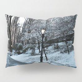 Park Finds Pillow Sham