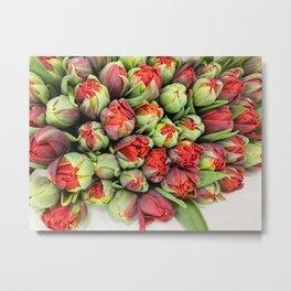 Tulips day Metal Print
