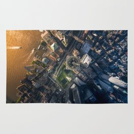 Above the One World Trade Center Rug