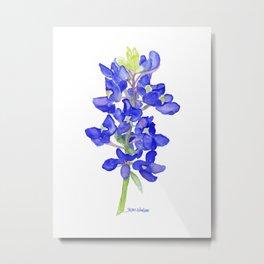 Bluebonnet Watercolor Metal Print
