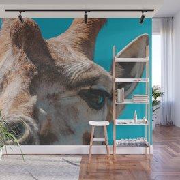 Honk the Horn   Melbourne, Australia Wall Mural