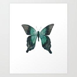 Butterfly - Nature Study #1 Art Print
