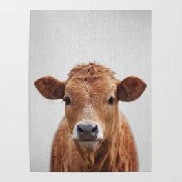 Cow 2 - Colorful Poster
