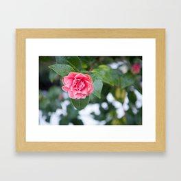 Beauty in Strength Framed Art Print
