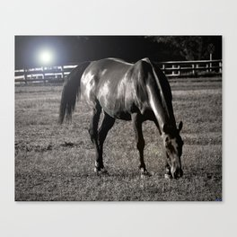 Night Mare Canvas Print