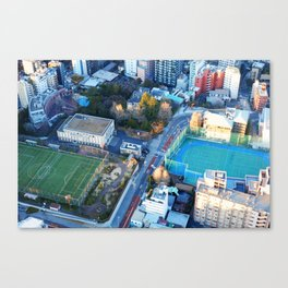 Looking Down from Tokyo Tower Canvas Print