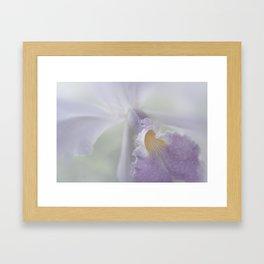 Beauty in a Whisper Framed Art Print