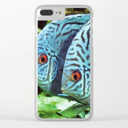 Turquoise Blue Discus Clear iPhone Case