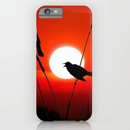 Blackbirds On Red Sunset. iPhone Case