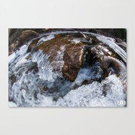 Rocky mountain river sculptures  Canvas Print