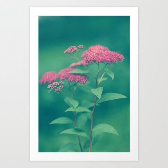 Beauty in Pink Art Print