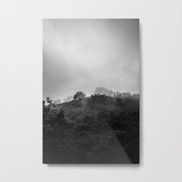 Nature Study I Metal Print