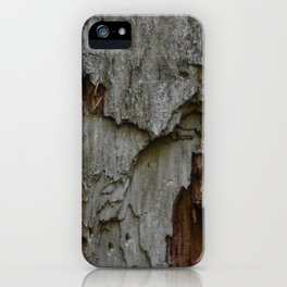 Kings Canyon Tree no.3 iPhone Case