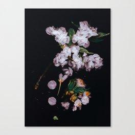 Spring 2k17 Aesthetic Canvas Print