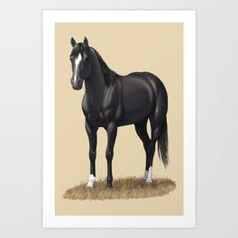 Beautiful Black Stallion Quarter Horse Art Print