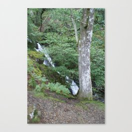 Wales Landscape 6 Mountain Stream and Tree Canvas Print
