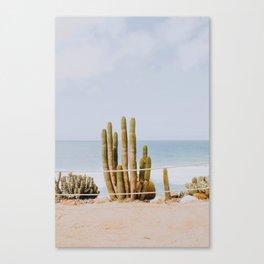 San Diego / California Canvas Print