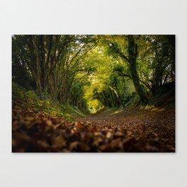 Green Tunnel Vision Canvas Print