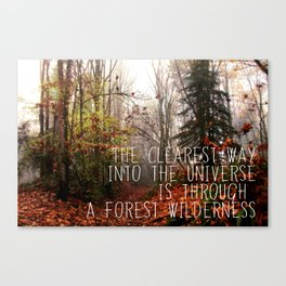 The clearest way into the universe Canvas Print