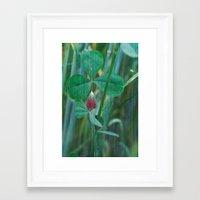 clover Framed Art Prints featuring Clover by Christine baessler