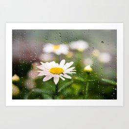 Daisies and Love Bugs Art Print