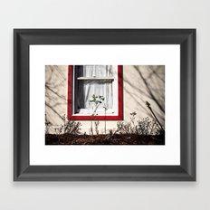 last rose of the season Framed Art Print