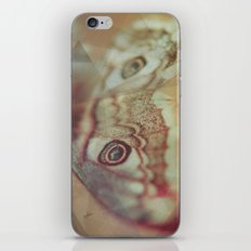 Butterfly II iPhone & iPod Skin