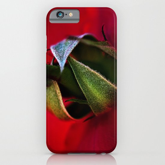 Red Rose iPhone & iPod Case