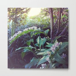 Toad Lily Fairy Garden Metal Print