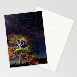 Stars and A Tree Stationery Cards