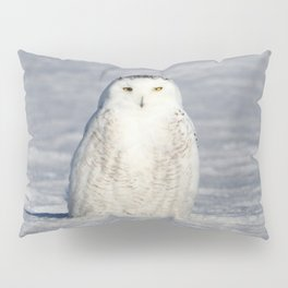 The Snow Queen Pillow Sham