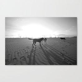 Dogs on the Beach Canvas Print